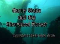 Harry Wong and the Sherwood forest